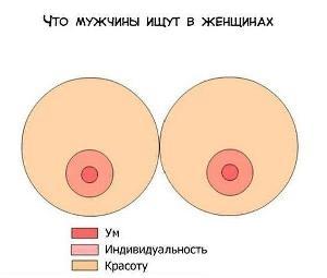 Как растут женская грудь на фото