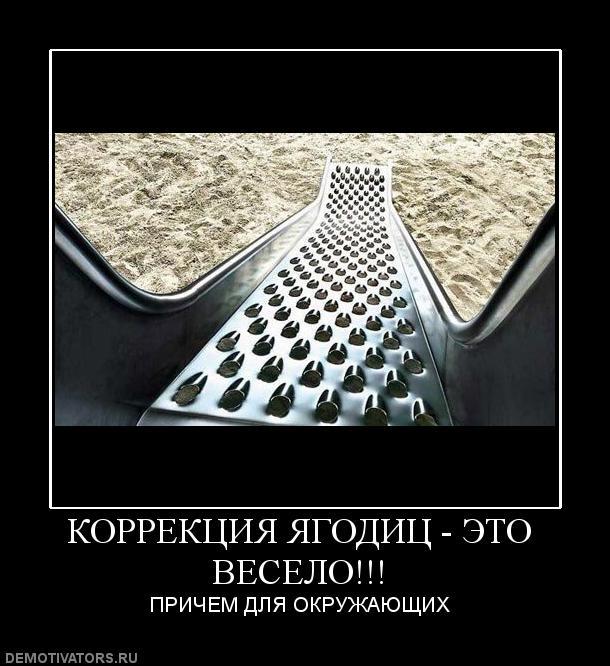 185573_korrektsiya-yagodits-eto-veselo